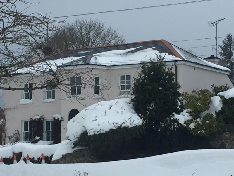 The Beast From The East Roofing